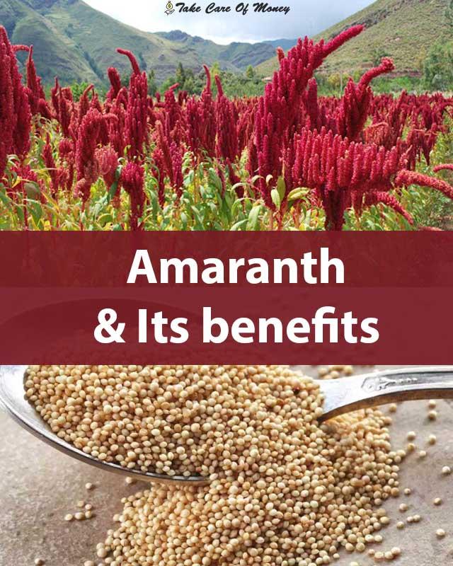 amaranth-and-its-benefits